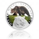 2016 - Stříbrná mince 1 NZD Medvěd hnědý - kolorováno