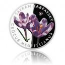2015 - Stříbrná mince 1 NZD Šafrán karpatský - kolorováno